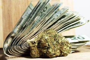 MARIJUANA CREDIT CO-OPS APPROVED IN COLORADO