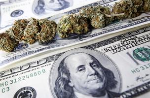 $9 million in marijuana grants