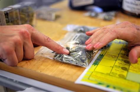 marijuana startups