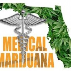 florida-medical marijuana
