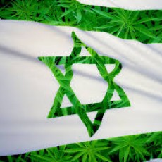 Israel Does Most Medical Weed Research