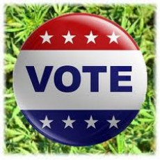 cannabis legalization votes