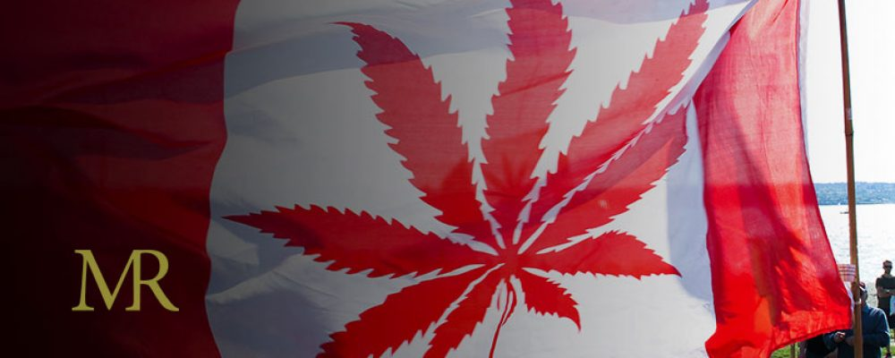 Gap Between Legal and Illegal Cannabis Increases In Canada