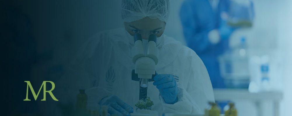 Uruguay Cultivation Firm Targets Global Medical Marijuana Market