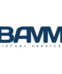 BAMM Virtual Services LLC