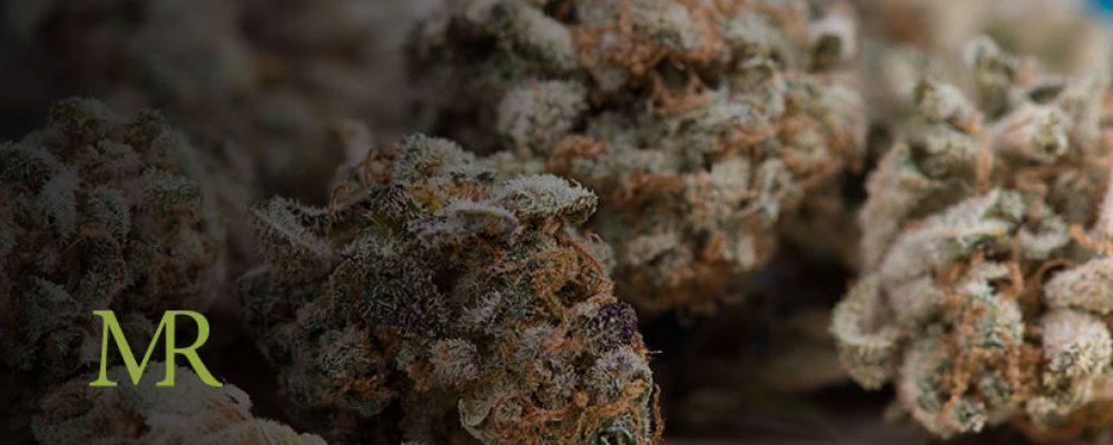 Report: 2020 Cannabis Sales Surpass 2019 Despite Pandemic