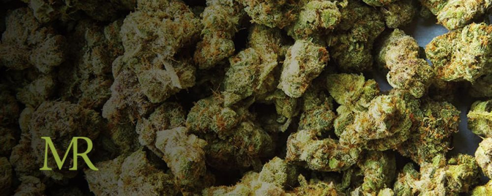 Illinois Recreational Marijuana Sales Reached Record-Breaking New Heights in July