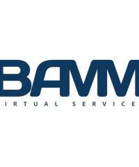 BAMM Virtual Services LLC